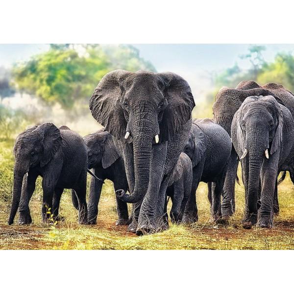 PUZZLE TREFL 1000 ELEFANTI AFRICANI
